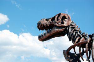 dinosaur-2-1018157-m